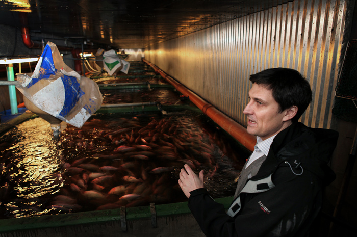 fiskodling7